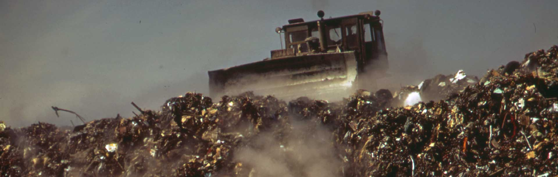 Reducing Food Waste: 1 In 5 Acres Of Land In US Is Growing Garbage thumbnail