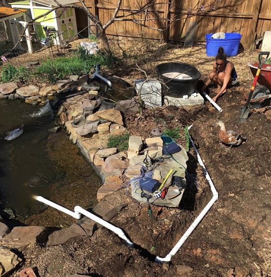 DIY backyard pond with self-cleaning