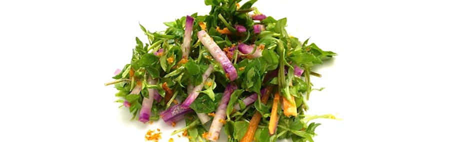 Chickweed recipe: turning common weeds into gourmet food thumbnail