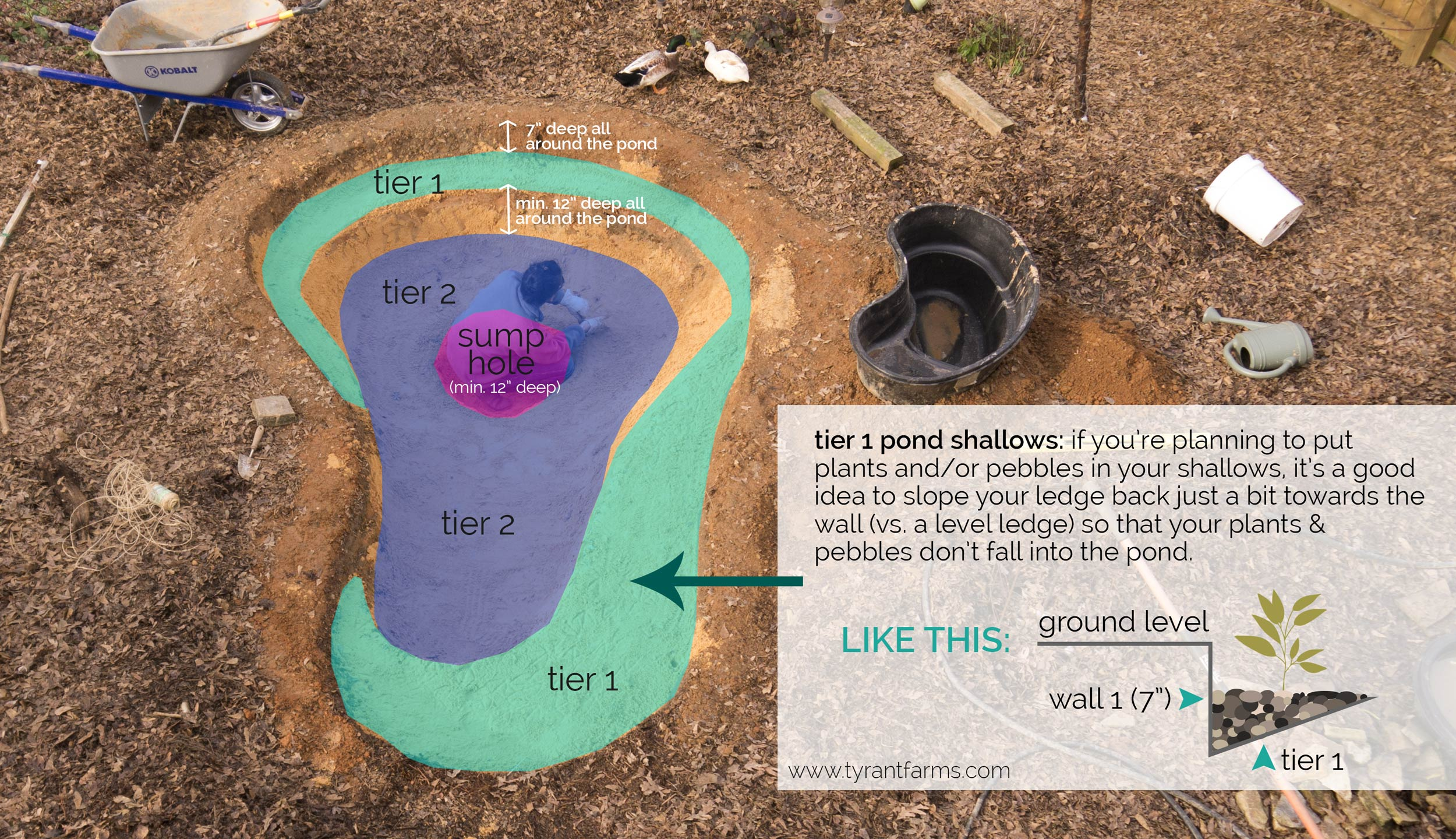 How to build a DIY backyard pond with self-cleaning biofilter