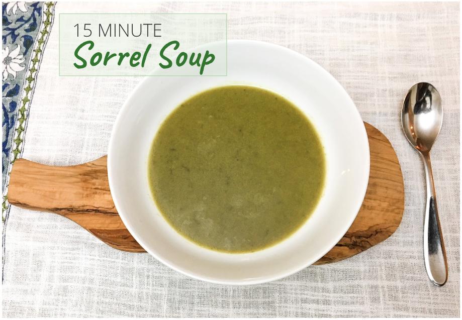 15 minute sorrel soup recipe