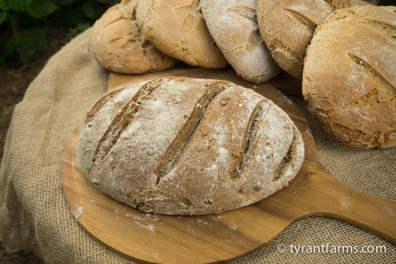 Whole wheat, organic, sourdough bread wood-fired to absolute perfection. If this was the