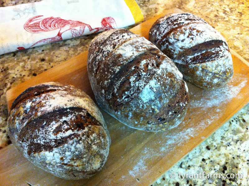 RIP wood-fired blueberry rye bread. These were not with us long, but they lived a good life.