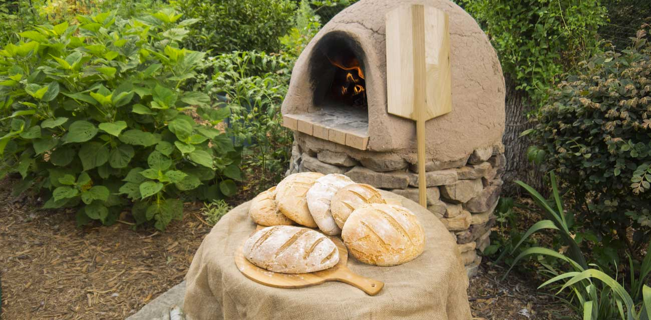 A nice batch of whole wheat sourdough bread from our cob oven. Whether you want to make your own cob oven or learn how to cook in a wood-fired cob oven, we've got you covered!