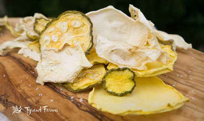 Super easy salt and vinegar squash chips - www.tyrantfarms.com