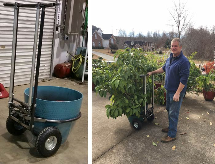 The picture John sent me from his shop (left) and John showing off the prototype device on our potted avocado plant. -pot moving device from Tyrant Farms