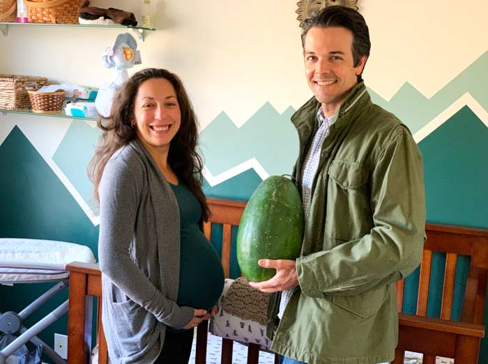 My mom thought it would be entertaining to take a photo of The Tyrant and I side by side comparing our respective watermelons. We still have a late season 12 pound Moon and Stars watermelon from our garden for a prop. 40 weeks pregnant - Susan and Aaron von Frank