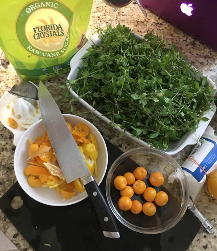 Making chickweed wine - and a mess.