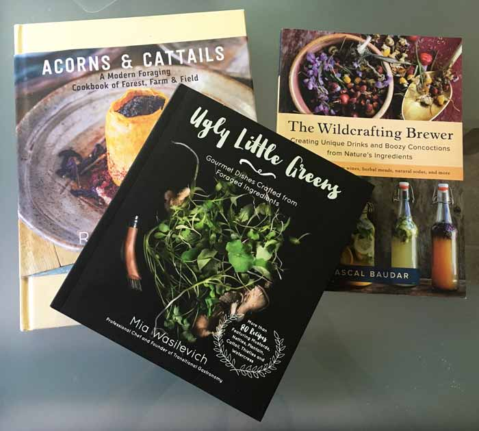 Good recipe and foraging books if you want to make