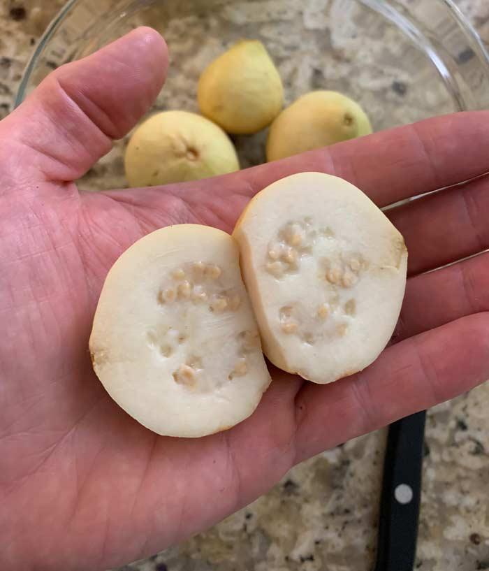 A cross section of one of our Peruvian white guavas. You can see the center of the fruit, which contains lots of small, hard seeds.