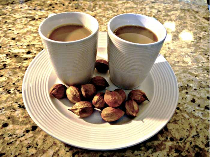 Mmm. Warm hickory nut ambrosia with grass milk and maple syrup on a cold fall night. This is one delicious hickory nut recipe!