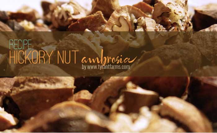 Hickory nut recipe: hickory nut ambrosia by Tyrant Farms