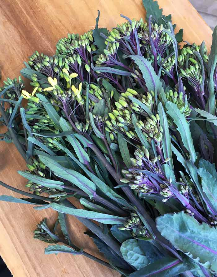 Hello beautiful! Garden-fresh kale and kohlrabi florets on the cutting board in our kitchen.