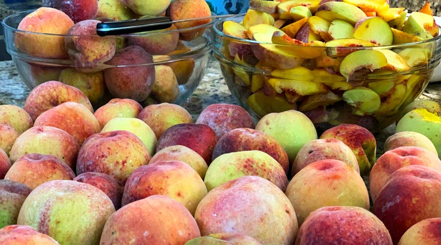 How to grow organic peaches in the southeast US - an interview with Clemson scientists thumbnail