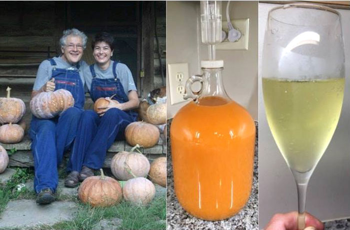 This picture that Andrea sent makes us happy. From pumpkin to carboy to glass, you can see the pumpkin's transition to champagne.