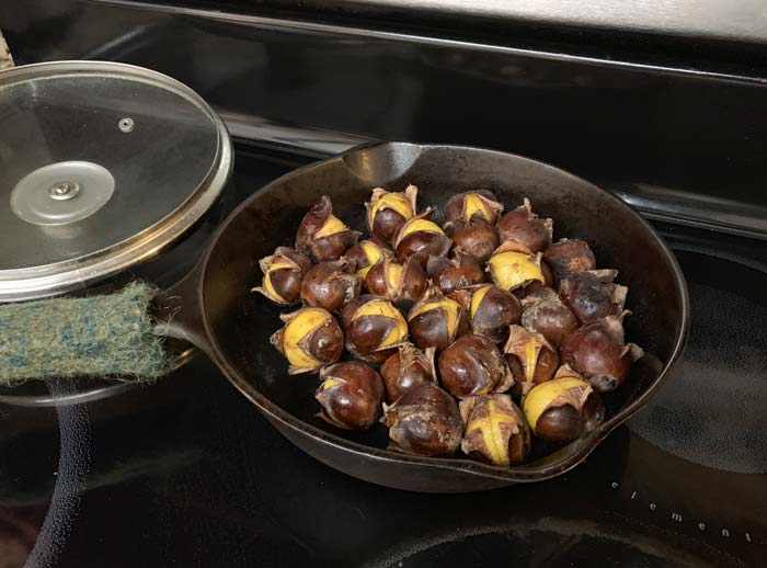 Chestnuts cooling in cast iron skillet.
