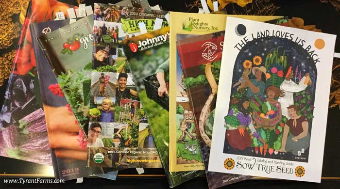 Some of our favorite seed catalogues, marked up and ready to be ordered from!
