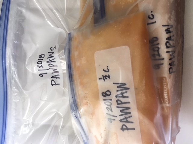 1/2 cup and 1 cup freezer bags of pawpaw, processed and ready for
