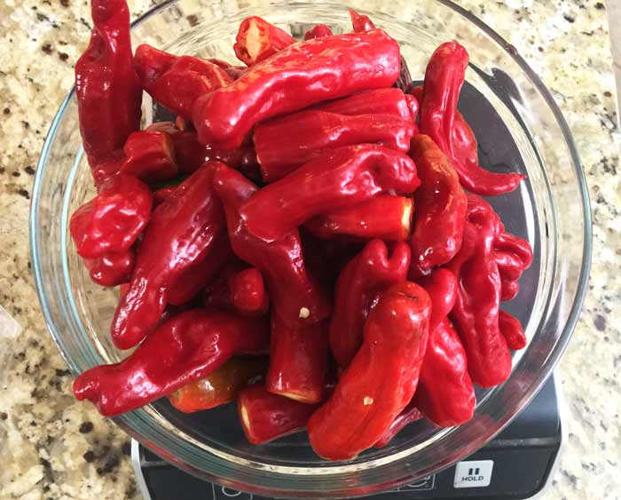 A bowl of ripe, red Shishito peppers, perfect for making into red Shishito pepper soup!