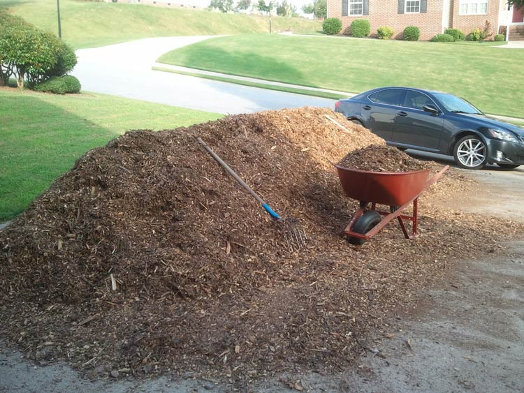 When we were originally starting our first garden, we called lots of tree service companies to see if any could drop wood chips at our house for free. This actually saves them money since they don't have to pay disposal fees at a landfill. After a few calls, we had all the free wood chips we needed to get started! How to start a garden, by Tyrant Farms