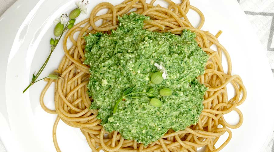 Stinging nettle pesto with green garlic thumbnail