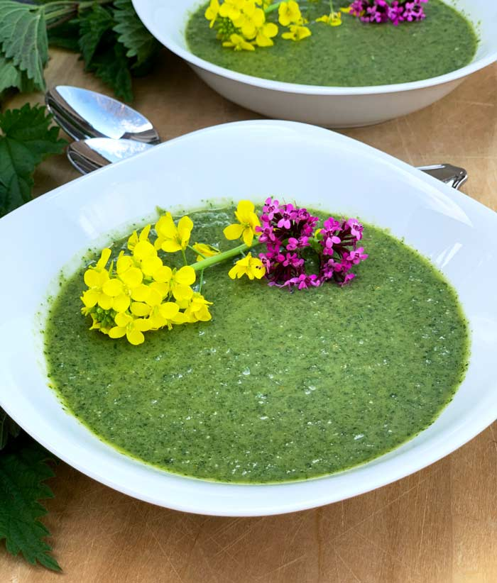 We jokingly refer to our raw stinging nettle soup as Incredible Hulk soup, partly due to the bright green color and partly due to how good it makes you feel after you eat it!