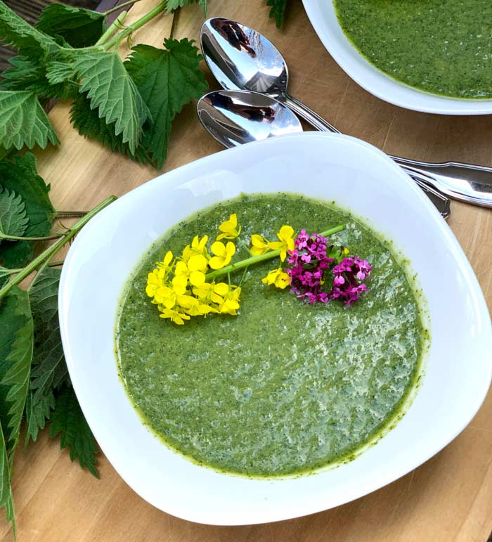 Mmm. Raw stinging nettle soup garnished with fresh edible flowers from the garden. Tastes like spring!