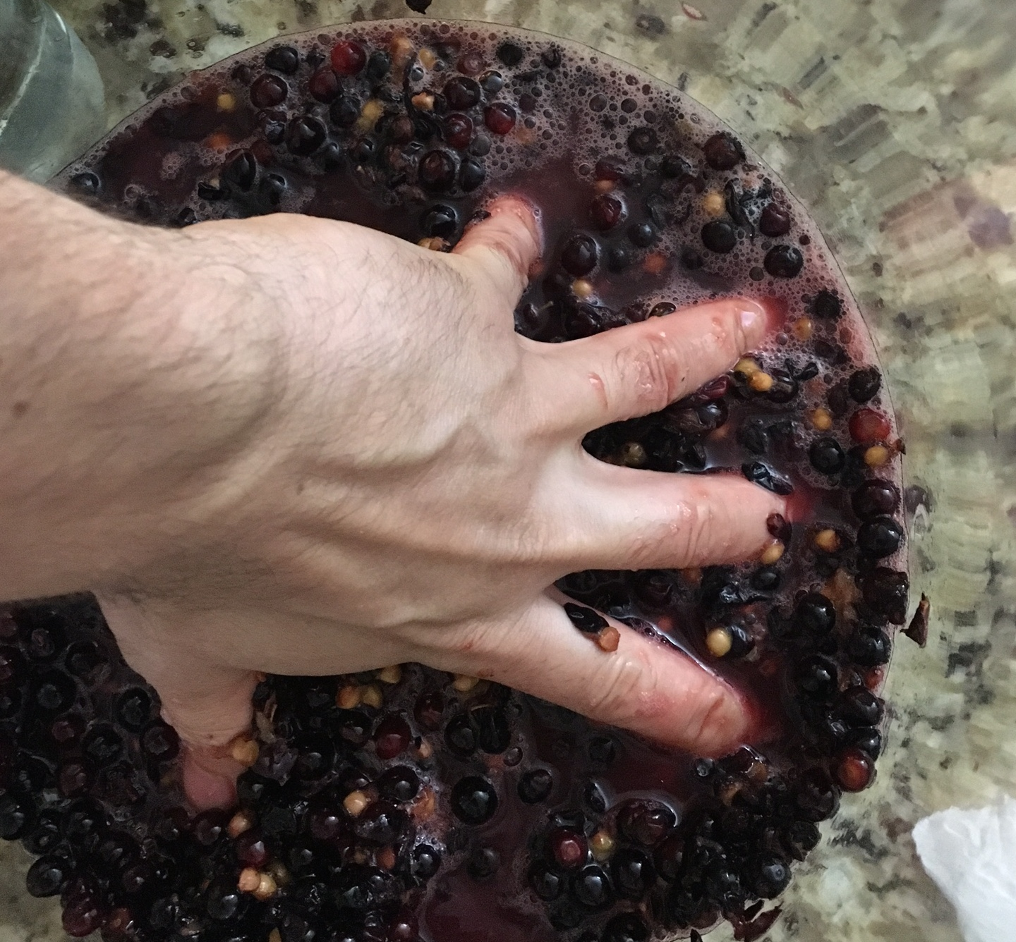 Mushing up the cherries during the first step to get them ready for fermentation. This is similar to stomping wine grapes. If you have enough cherries to stomp with your feet, we're very jealous of you.