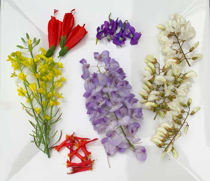 Edible flowers aren't just gorgeous, they're packed with flavor and nutrition. Flowers from left to right: brassicas, turk's cap, coral honeysuckle, wisteria, violas, and black locust.