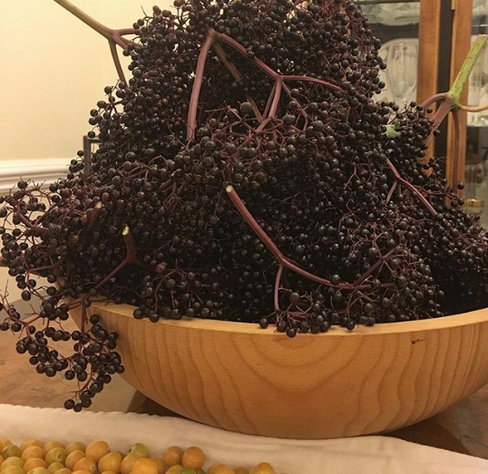 Our elderberry bushes produce A LOT of fruit. This is one night's harvest in June, and it's only a portion of the fruit that was on our trees.