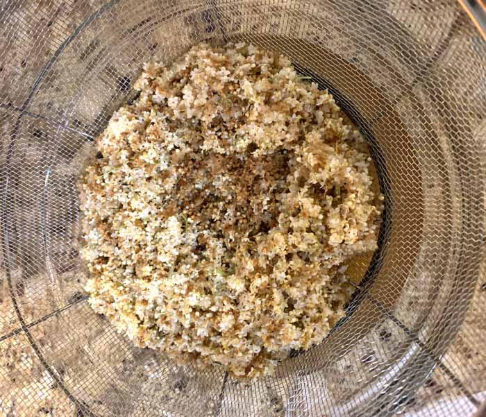 Straining elderflowers to make elderflower kombucha.