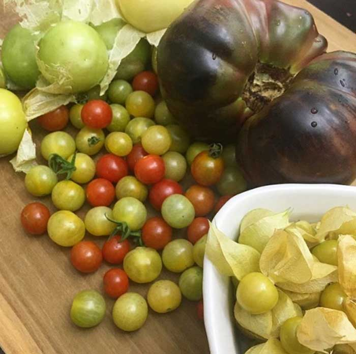 Tomatillos (top left) are closely related to other well-known nightshade fruits like tomatoes and ground cherries.